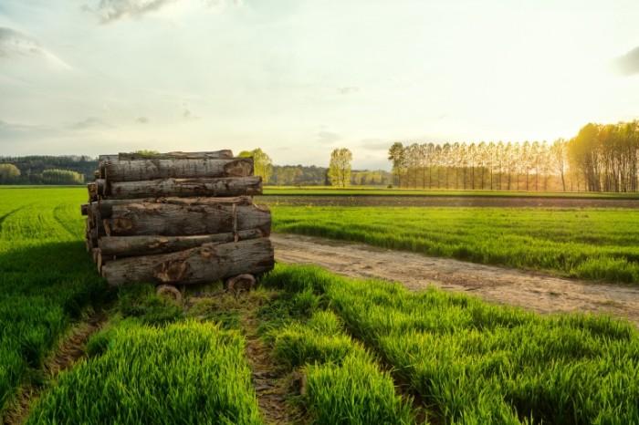 Насколько ограничено строительство на сельхозземлях
