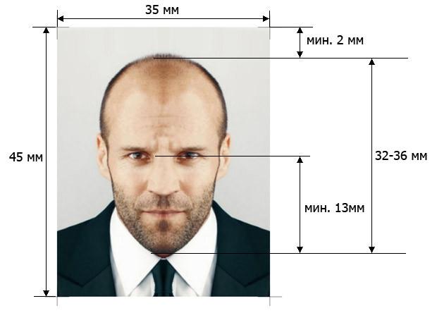 Требования к размерам и параметрам фото для Шенгена