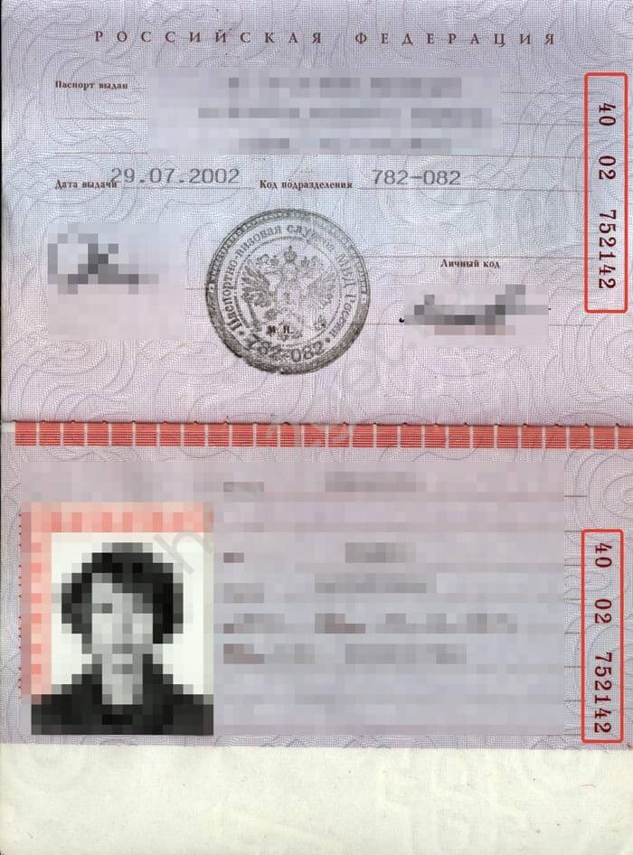 Где посмотреть серию и номер паспорта