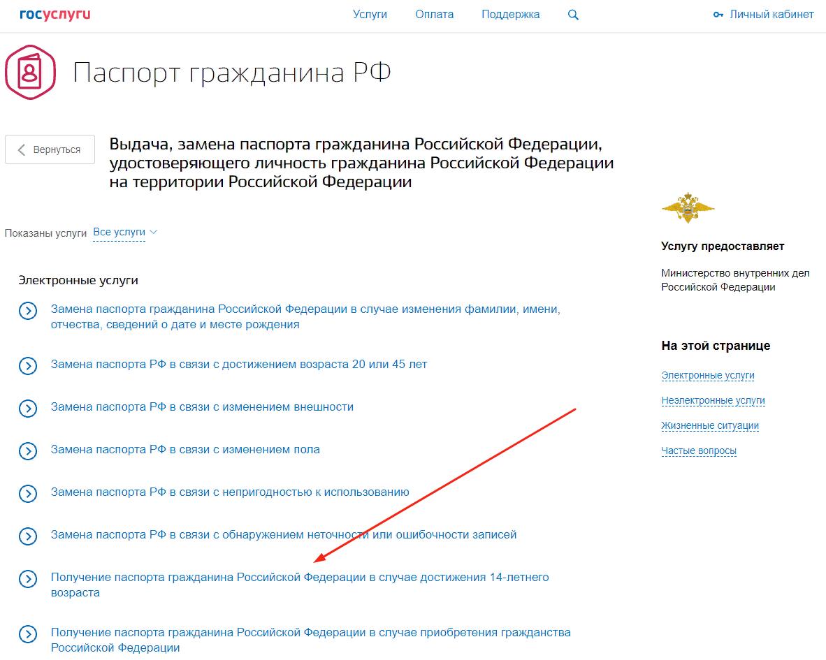 Как получить российский паспорт в 14 лет через сайт Госуслуг