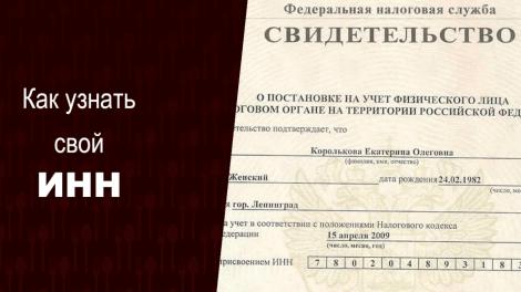 Водительское удостоверение с чипом в россии