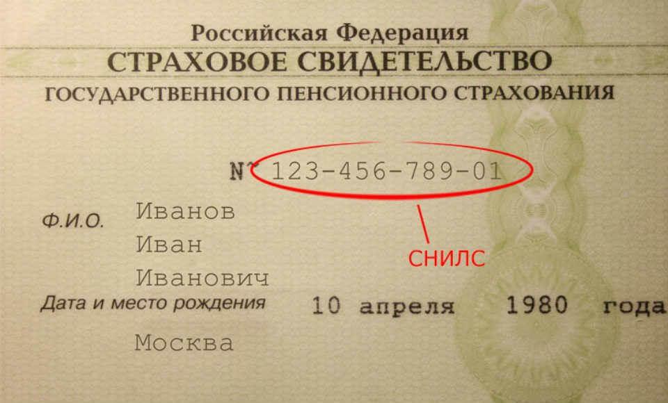 Как выглядит СНИЛС в России